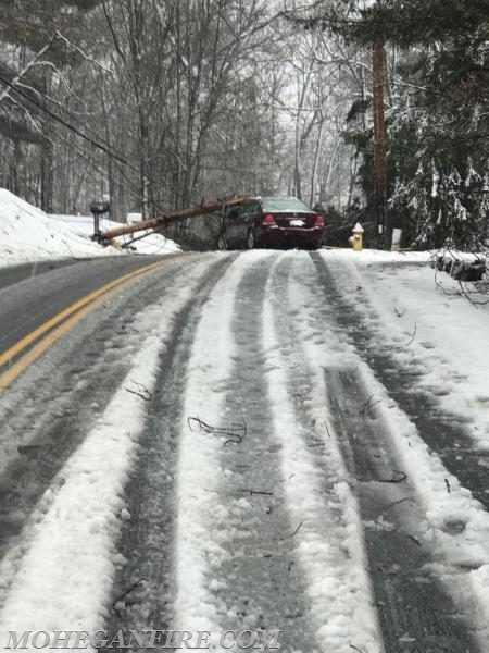 Fri. 3/2/18: Tree/Wires/Pole Down on Occupied Vehicle on Locust Ave