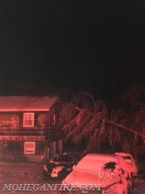 Fri. Night 3/2/18: Structural Damage from Fallen Tree on Gomer Street